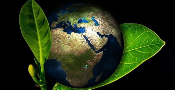 Obchody Międzynarodowego Dnia Ziemi i Zdrowia 2017